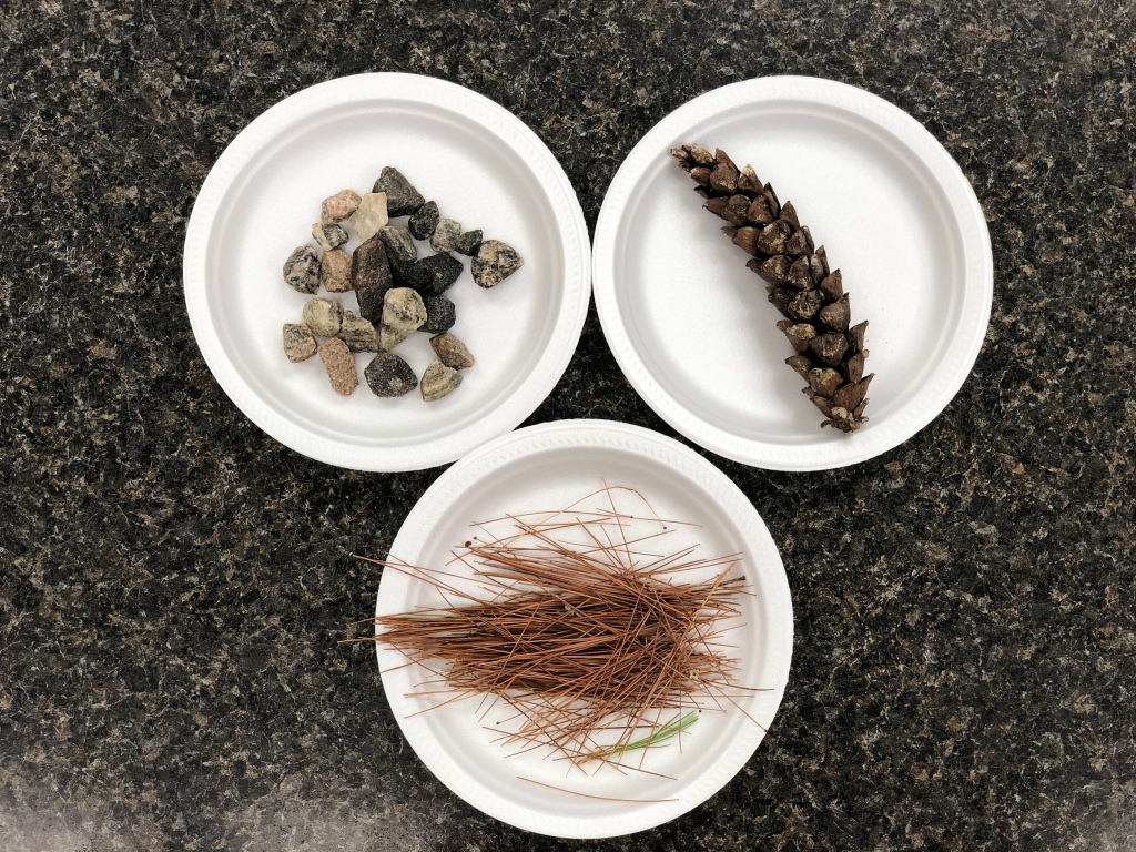 Picture of three plates on a kitchen island from above. Each plate contains a different material; rocks, pine needles and a pine cone